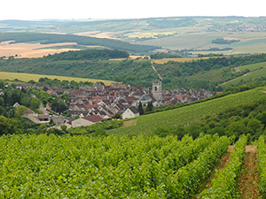 Beautiful Burgundy villages & vineyards